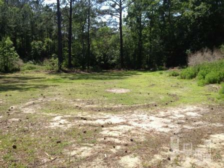 732 Edgewater Club Rd - Photo 1