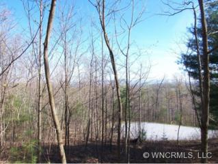 109  Turkey Roost Court  , Hendersonville, NC 28739 (MLS #514174) :: KW The Puffer Team