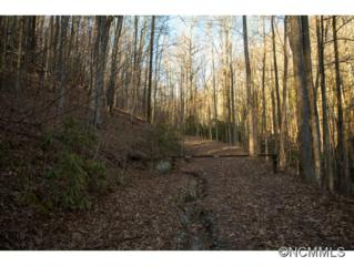 12B  Indian Camp Mountain  , Rosman, NC 28772 (MLS #533617) :: Exit Mountain Realty