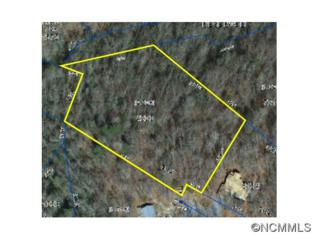 L-CH3  Of Cardinal Road  , Brevard, NC 28712 (MLS #534628) :: Exit Mountain Realty