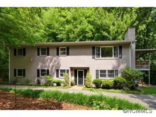 167  Kingfisher Rd.  , Brevard, NC 28712 (MLS #538222) :: Exit Mountain Realty