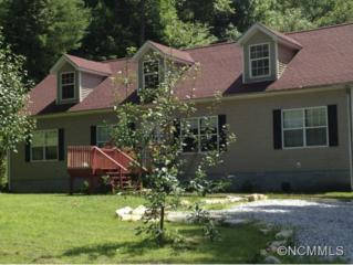 76  Peter Weaver Creek Road  , Brevard, NC 28712 (MLS #543977) :: Exit Realty Vistas