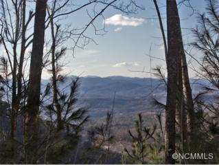 20  Timberwolf Court  , Asheville, NC 28804 (MLS #555875) :: Exit Realty Vistas