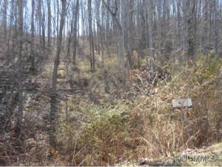 10  La Grange Drive  , Asheville, NC 28803 (MLS #557617) :: Exit Mountain Realty