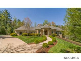 18  Cedar Hill Drive  , Asheville, NC 28803 (MLS #560473) :: Exit Realty Vistas
