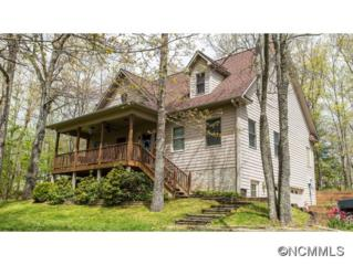 105  Mountain Meadows  , Penrose, NC 28766 (MLS #561111) :: Exit Mountain Realty