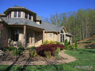 131  Arcadia Falls  , Black Mountain, NC 28711 (MLS #561175) :: Exit Realty Vistas
