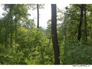 57 A  Fox Den Road  , Asheville, NC 28805 (MLS #562942) :: Exit Realty Vistas