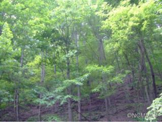 LOT 103  Hickory Vista Lane  , Mills River, NC 28759 (MLS #562963) :: Exit Realty Vistas