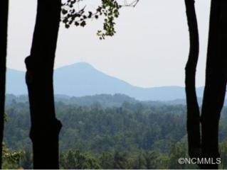 174  High Road Overlook-Lt24  , Hendersonville, NC 28739 (MLS #564090) :: Puffer Properties