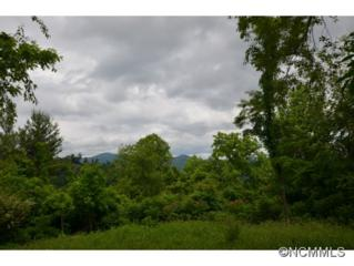 107  Summit Tower Circle  , Asheville, NC 28804 (MLS #564096) :: Exit Realty Vistas