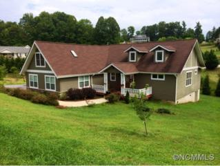 17  Woods Crossing Way  , Weaverville, NC 28787 (MLS #565602) :: Exit Realty Vistas