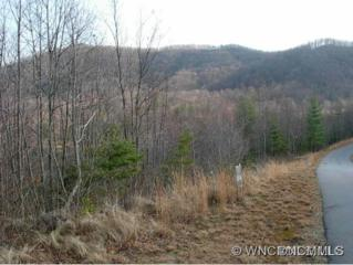 Lot 51  Feather Falls Trail  , Black Mountain, NC 28711 (MLS #566810) :: Exit Realty Vistas