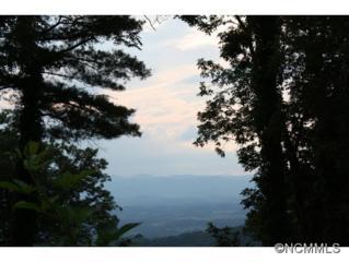 112  Summit Tower Circle  , Asheville, NC 28804 (MLS #566879) :: Exit Realty Vistas