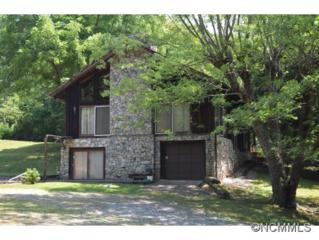 95  Cowan Cove Road  , Asheville, NC 28806 (MLS #566934) :: Exit Realty Vistas