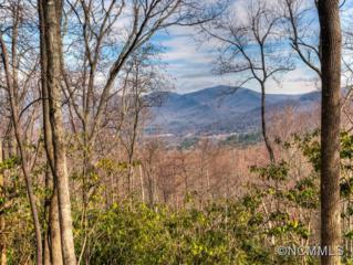 22.82 ac  Sharp Rd  , Black Mountain, NC 28711 (MLS #567245) :: Exit Realty Vistas