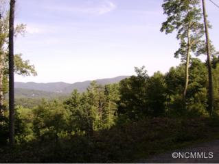 0000  Fox Den Road  , Asheville, NC 28805 (MLS #567455) :: Exit Realty Vistas