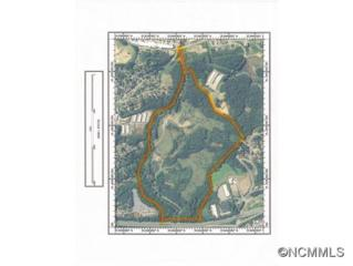 70  Old Beaverdam Creek  , Woodfin, NC 28804 (MLS #567819) :: Exit Realty Vistas