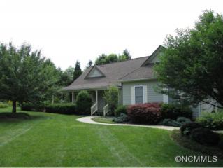 10  Westminster  , Hendersonville, NC 28739 (MLS #568236) :: RE/MAX Four Seasons Realty