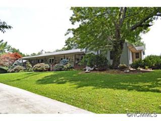 15  Meadowlark Rd  , Asheville, NC 28805 (MLS #568576) :: Exit Realty Vistas