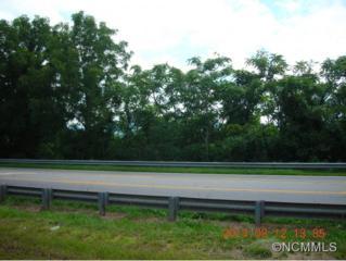 9999  Smokey Park Hwy  , Candler, NC 28715 (MLS #568589) :: Exit Realty Vistas