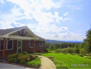 276  Richmond Hill Drive  , Asheville, NC 28806 (MLS #568987) :: Exit Realty Vistas