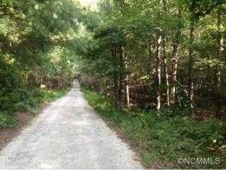 9999  Shumont Road  , Black Mountain, NC 28711 (MLS #569056) :: Caulder Realty and Land Co.