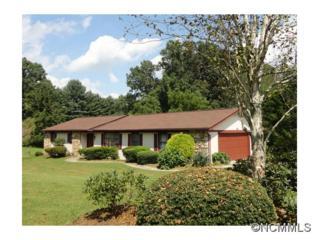 64  Beechwood Dr  , Horse Shoe, NC 28742 (MLS #569181) :: Exit Realty Vistas