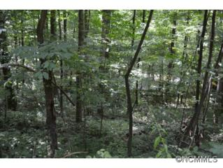 Lot 36  Scenic View Dr.  , Waynesville, NC 28785 (MLS #569278) :: Exit Realty Vistas