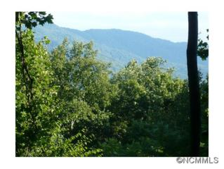 000  Riddle Road Extension  , Swannanoa, NC 28778 (MLS #569299) :: Exit Realty Vistas