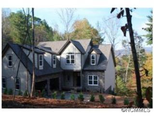 35  Old Eller Woods Drive  , Weaverville, NC 28787 (MLS #569591) :: Exit Realty Vistas