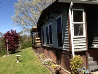 122  Jessup  , Clyde, NC 28721 (MLS #569615) :: Exit Realty Vistas