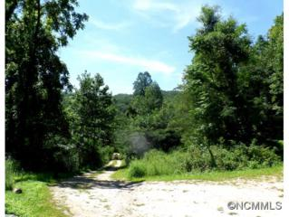 1566  Peppers Creek Rd  , Marion, NC 28752 (MLS #569719) :: Exit Realty Vistas