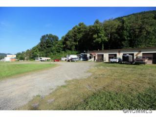 2971  Dellwood Road  , Waynesville, NC 28786 (MLS #569751) :: Exit Realty Vistas