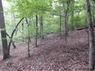LOT 53  Skye Dr  , Pisgah Forest, NC 28768 (MLS #569821) :: Exit Mountain Realty