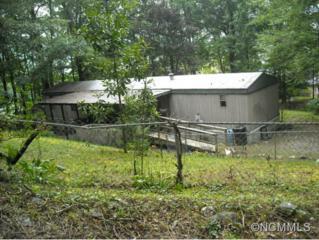81  Ridgemont Rd  , Hendersonville, NC 28729 (MLS #570803) :: Exit Realty Vistas