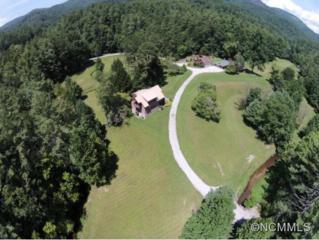 2730  Clear Creek Road  , Highlands, NC 28741 (MLS #570806) :: Exit Realty Vistas