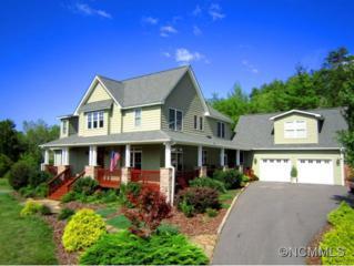 155  Garrison Branch Road  , Weaverville, NC 28787 (MLS #570890) :: Exit Realty Vistas