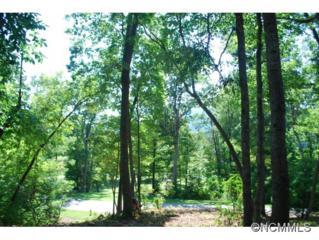 931  Clovertop Lane  , Arden, NC 28704 (MLS #570893) :: Exit Realty Vistas
