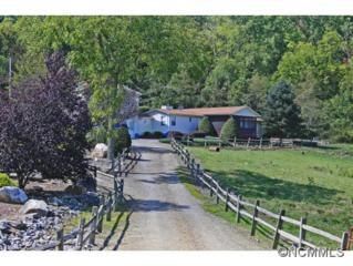 890  Poplar Cove Road  , Clyde, NC 28721 (MLS #570896) :: Exit Realty Vistas