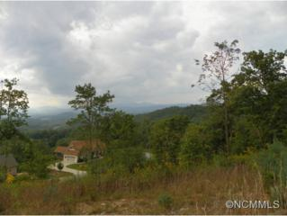 467  Crystal Heights Dr  , Hendersonville, NC 28739 (MLS #570927) :: RE/MAX Four Seasons Realty