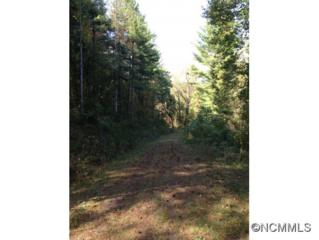 lot 1  New Home Road  , Marshall, NC 28753 (MLS #571431) :: Exit Realty Vistas
