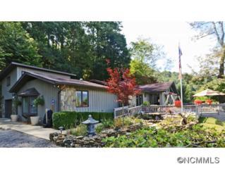 241  Spirit Mountain Trail  , Waynesville, NC 28786 (MLS #571554) :: Exit Realty Vistas