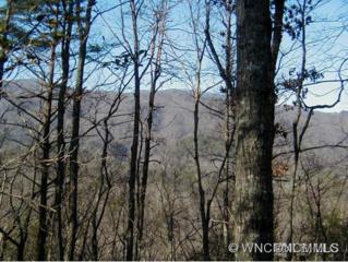 Lot 67  Treetops Lane  , Lake Lure, NC 28746 (MLS #571815) :: Washburn Real Estate