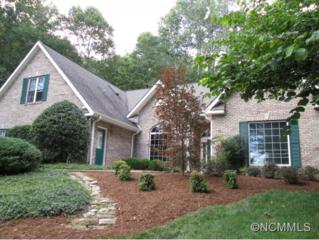 741  North Sunlight Ridge Ct.  , Hendersonville, NC 28792 (MLS #571927) :: RE/MAX Four Seasons Realty