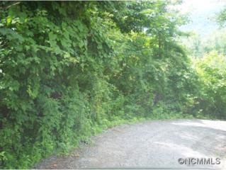 2615  Us Highway #70  , Swannanoa, NC 28778 (MLS #572155) :: Exit Realty Vistas