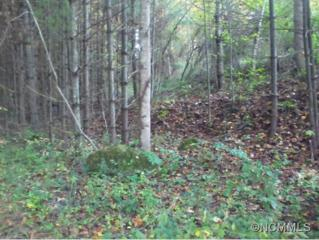Lot 8  Willow  , Rosman, NC 28772 (MLS #572534) :: Exit Mountain Realty