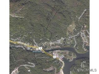 1  Buddy Lane  , Lake Lure, NC 28746 (MLS #572580) :: Washburn Real Estate
