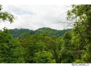 364  Chisel Rock  , Mars Hill, NC 28754 (MLS #572665) :: Exit Realty Vistas