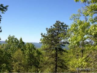 Lot 30-R  West View Drive  , Rosman, NC 28772 (MLS #572682) :: Exit Mountain Realty